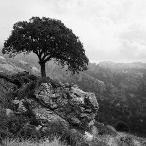 2-osaiset Canvastaulusarjat – Tramuntana