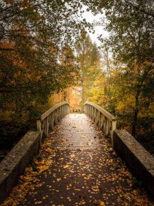 Vääksyn kanavan silta syksyn ruska - Jari Sokka - AK-Taulucenter