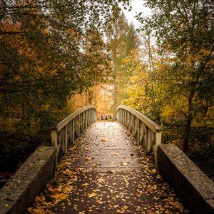 5-osaiset Symmetriset Canvastaulusarjat – Vääksyn Kanavan Silta Syksyn Ruska