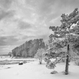 Lauttasaari Vattuniemi 2 - Mikael Rantalainen - AK-Taulucenter