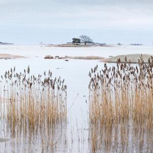 Lauttasaari Vattuniemi panorama - Mikael Rantalainen - AK-Taulucenter